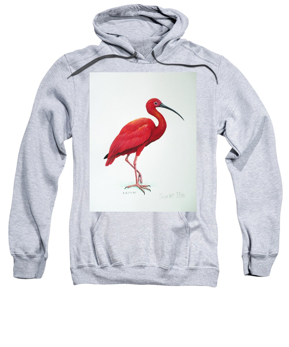 Scarlet Ibis Sweatshirt featuring the painting Scarlet Ibis by Christopher Cox