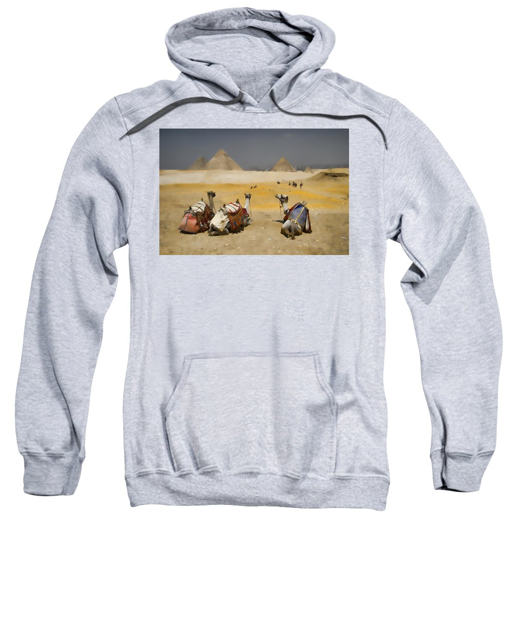 Egypt Sweatshirt featuring the photograph Scenic View Of The Giza Pyramids With Sitting Camels by David Smith