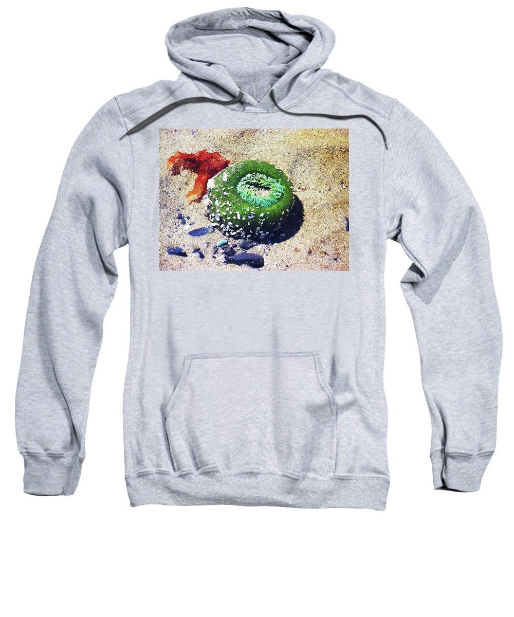 Anemone Sweatshirt featuring the photograph Sea Anemone by Julie Rauscher
