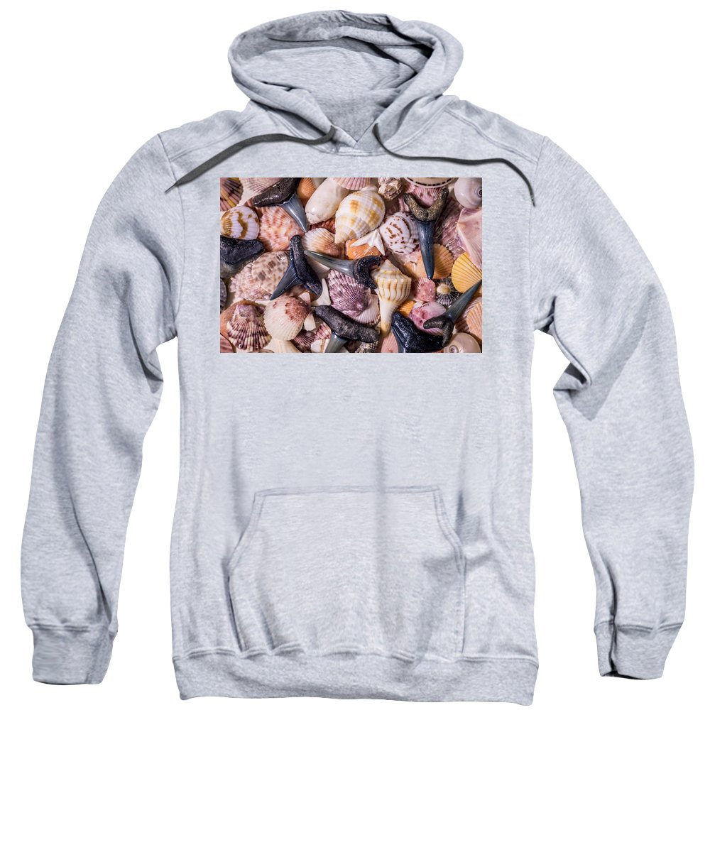 Sea Shells Sweatshirt featuring the photograph Sea Bones 22 by Robbie Lyle
