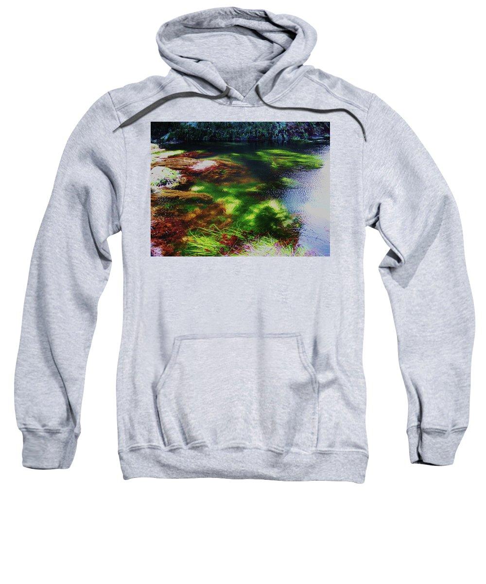 Tide Pool Sweatshirt featuring the photograph Sea Grass by Julie Rauscher