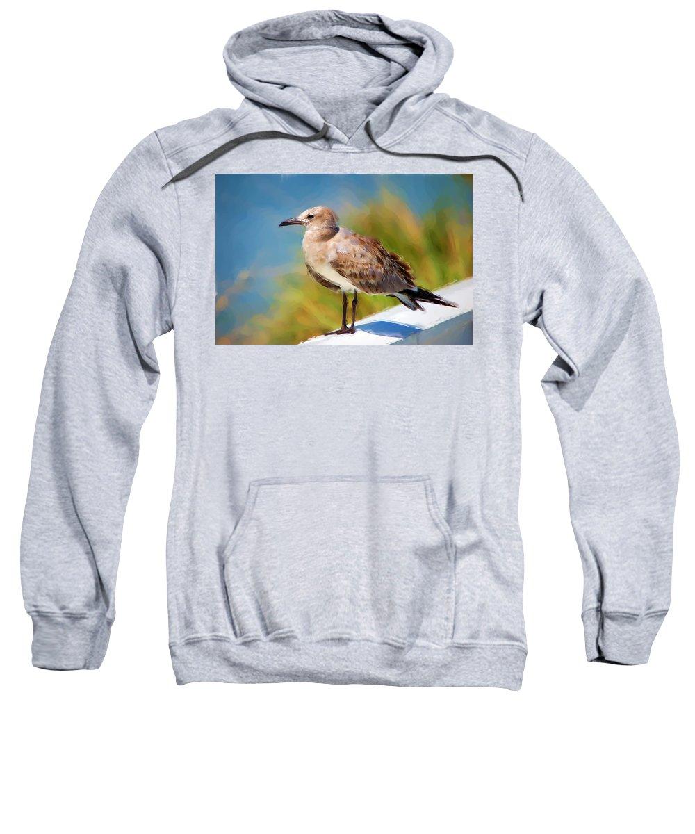 Gull Sweatshirt featuring the painting Sea Gull Of Boca Grande by Rich Leighton