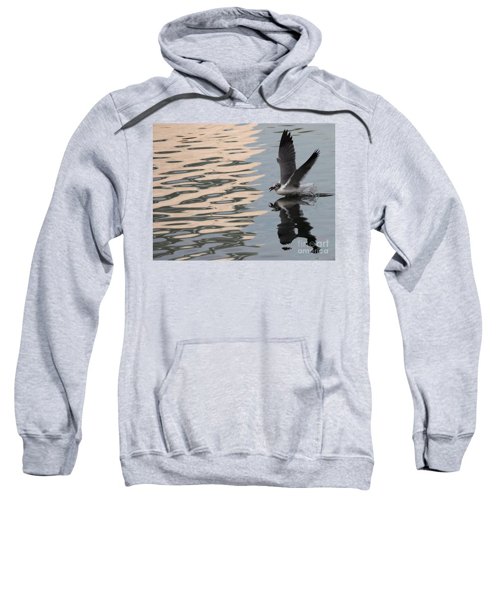 Bird Sweatshirt featuring the photograph Seagull Fun by Carol Groenen