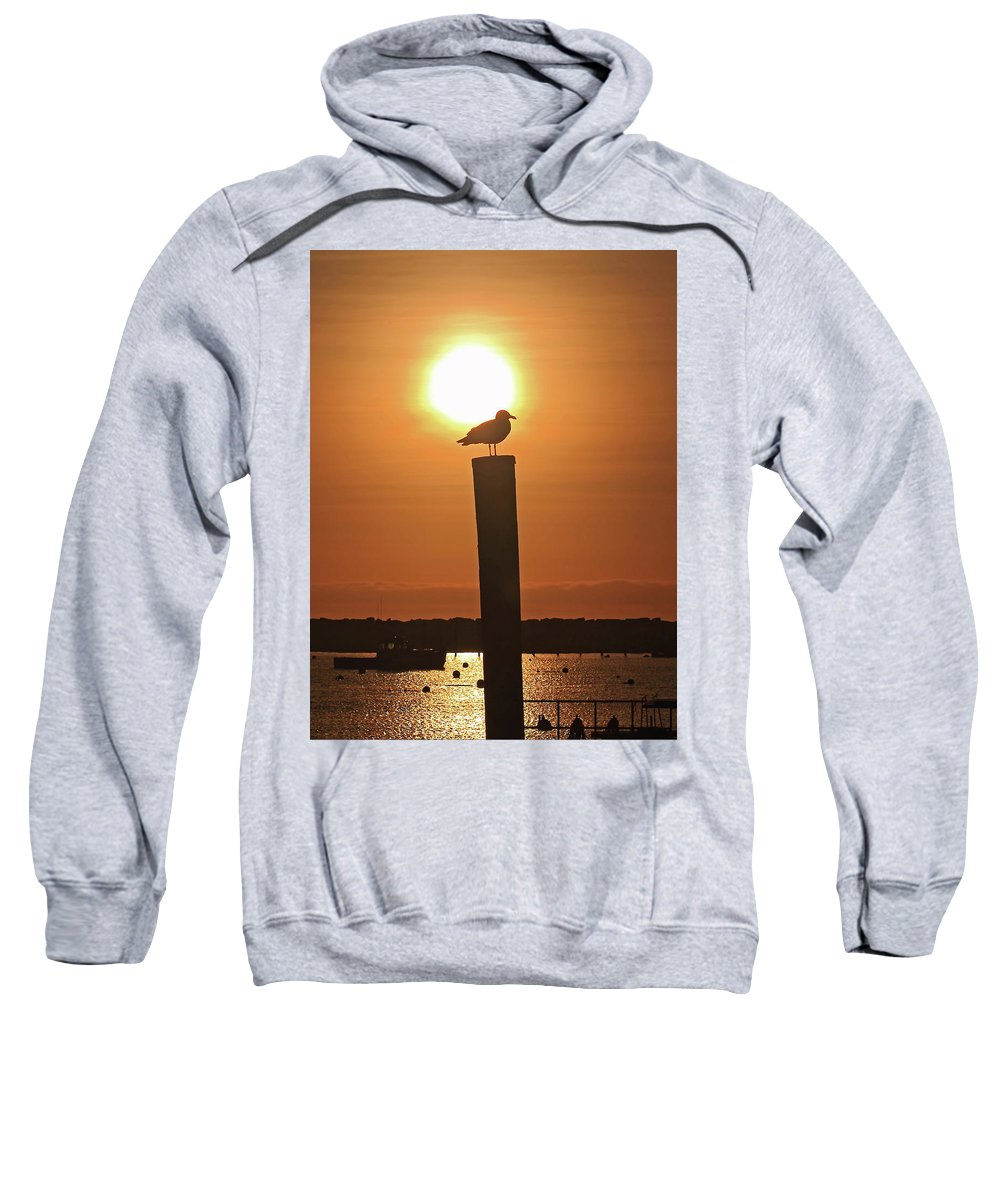 Seagull Sweatshirt featuring the photograph Seagull On A Post by Brian Pflanz