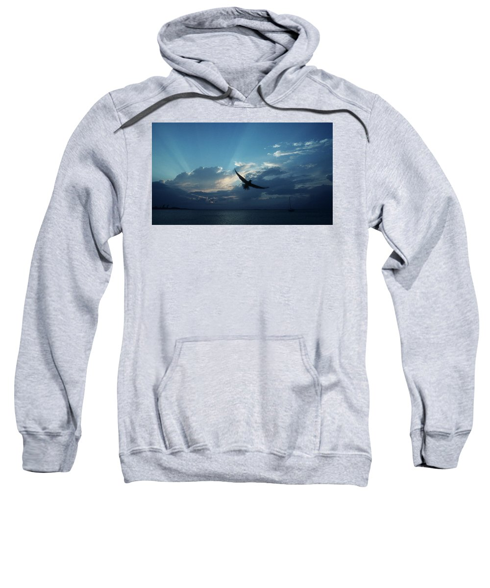 Seagull Sweatshirt featuring the photograph Seagull by Steve Williams