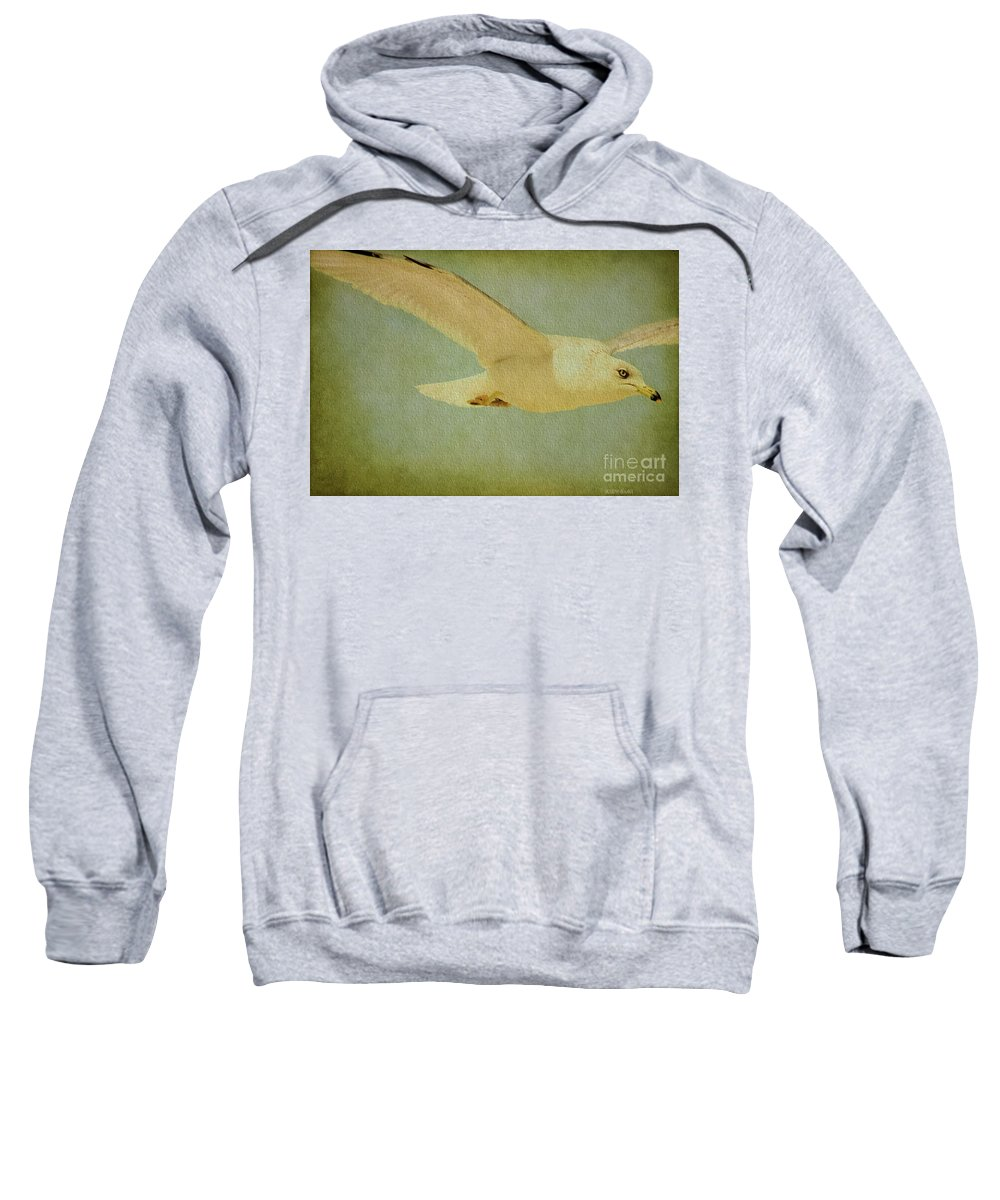 Seagull Sweatshirt featuring the photograph Seagull Texture by Deborah Benoit
