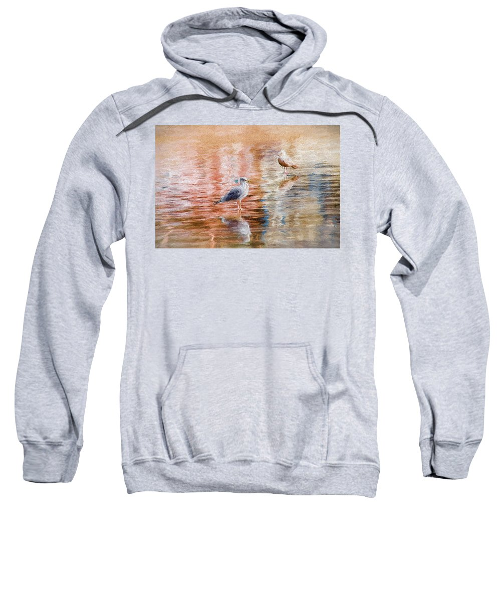Seagull Sweatshirt featuring the photograph Seagulls - Impressions by Susie Peek