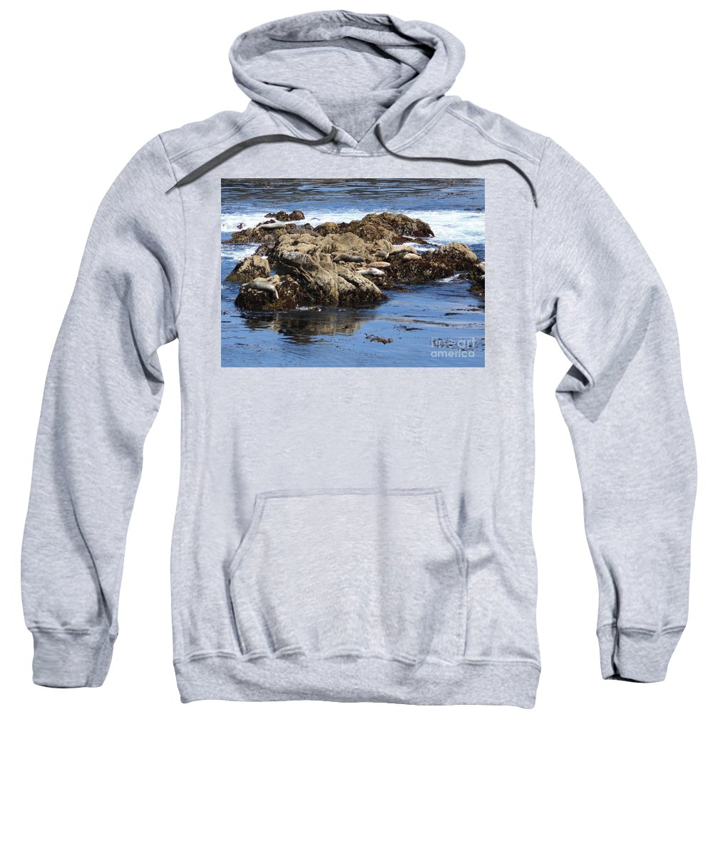 California Coast Sweatshirt featuring the photograph Seal Island by Carol Groenen