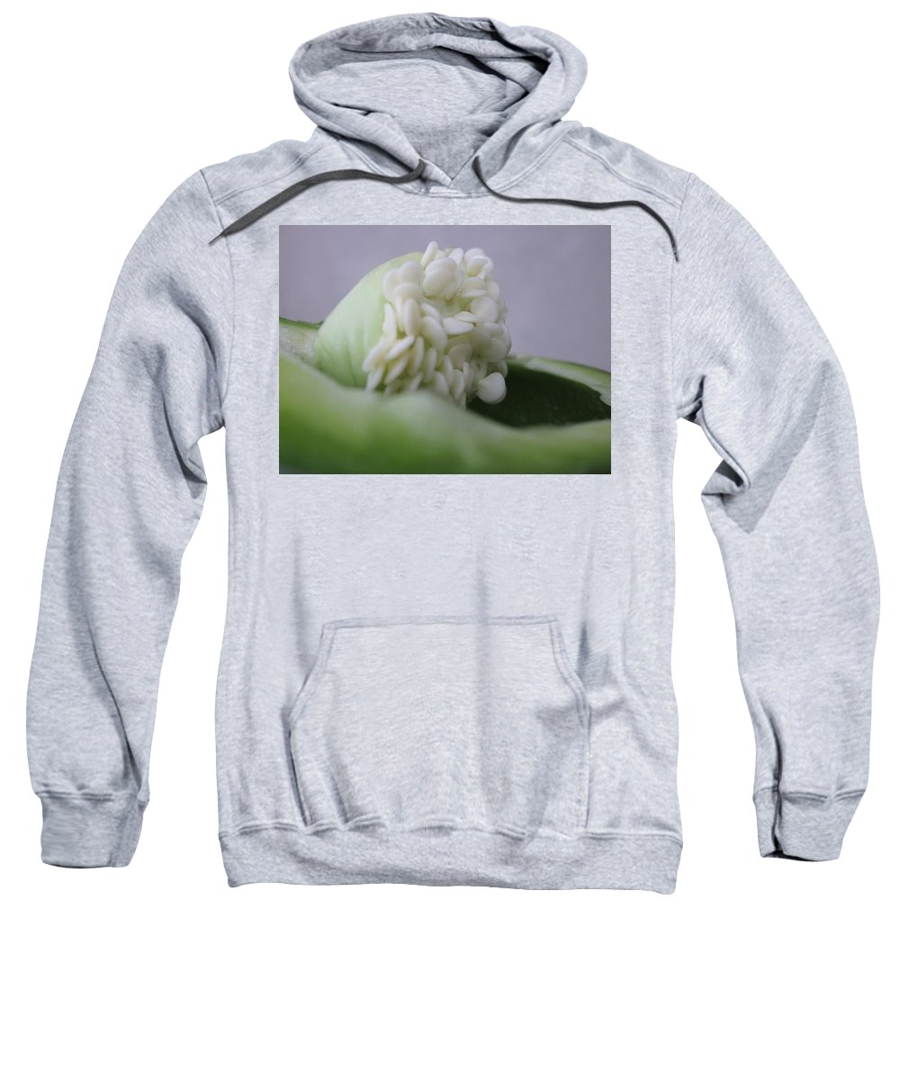 Photograph Of Seed Sweatshirt featuring the photograph Seed Ala Bell by Gwyn Newcombe