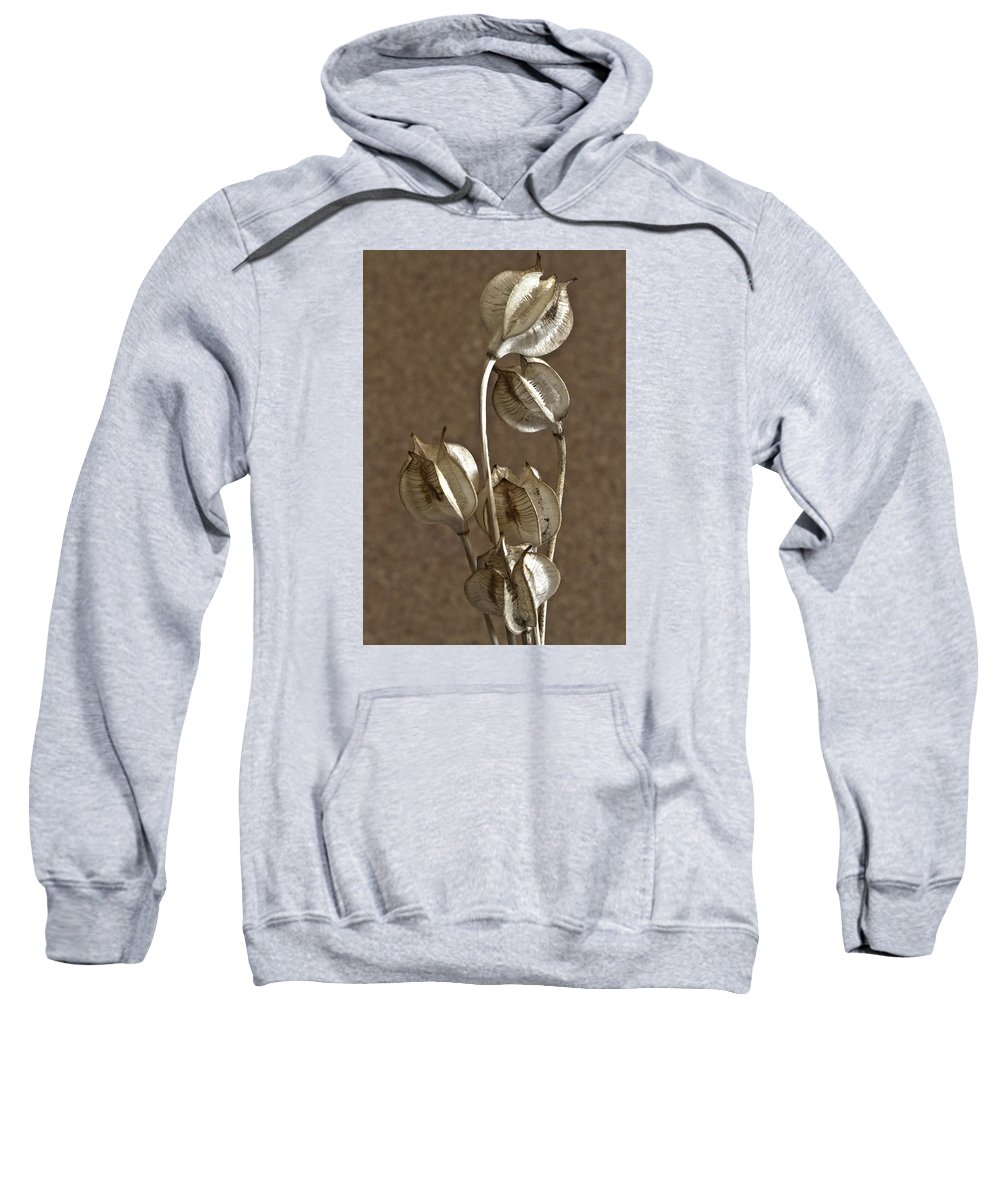Seeds Sweatshirt featuring the photograph Seed Pods Macro by Sandra Foster