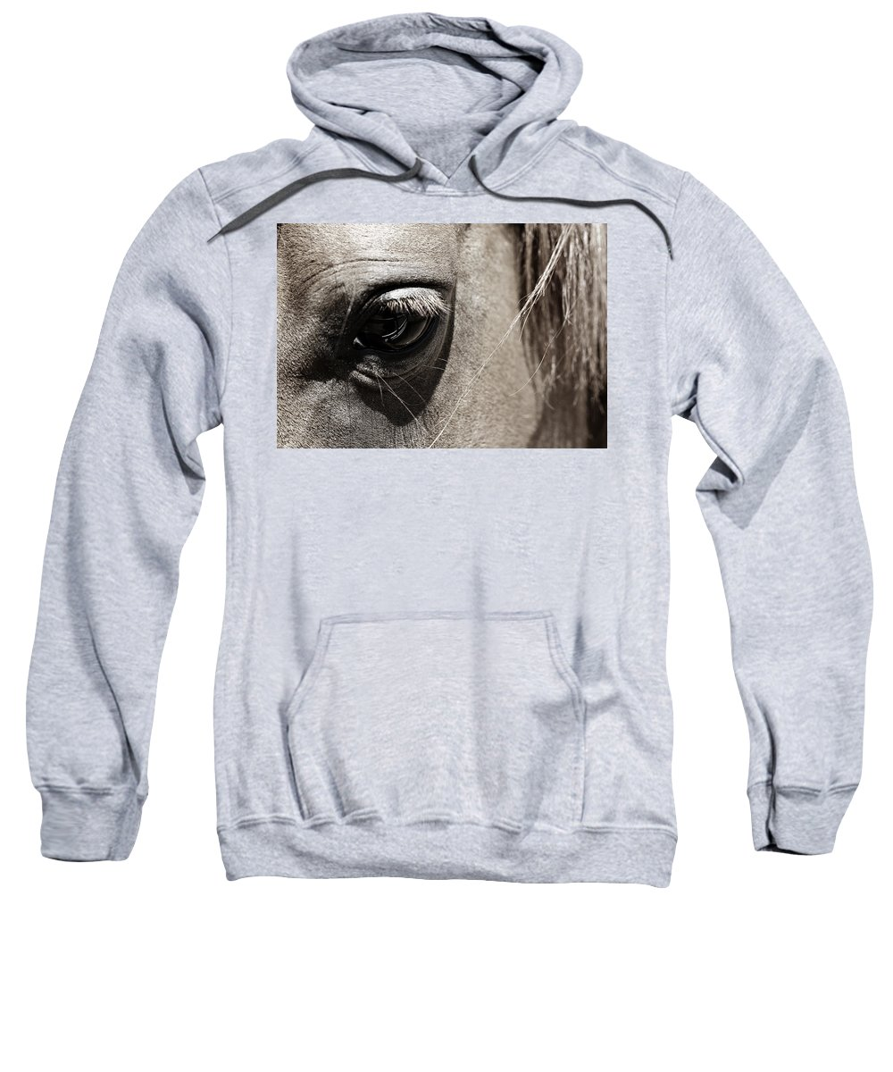 Americana Sweatshirt featuring the photograph Stillness In The Eye Of A Horse by Marilyn Hunt