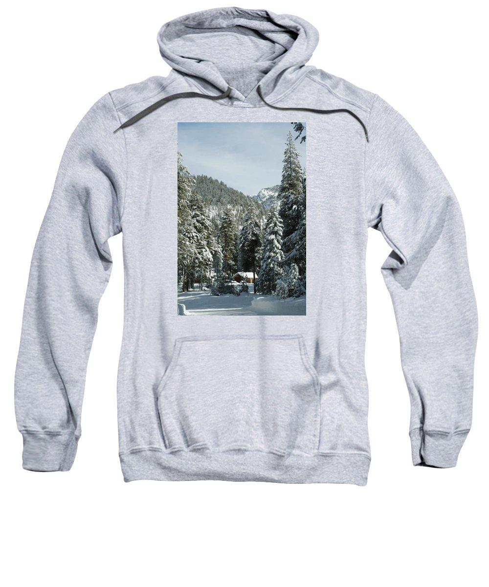 Sequoia Sweatshirt featuring the photograph Sequoia National Park 7 by Masha Batkova