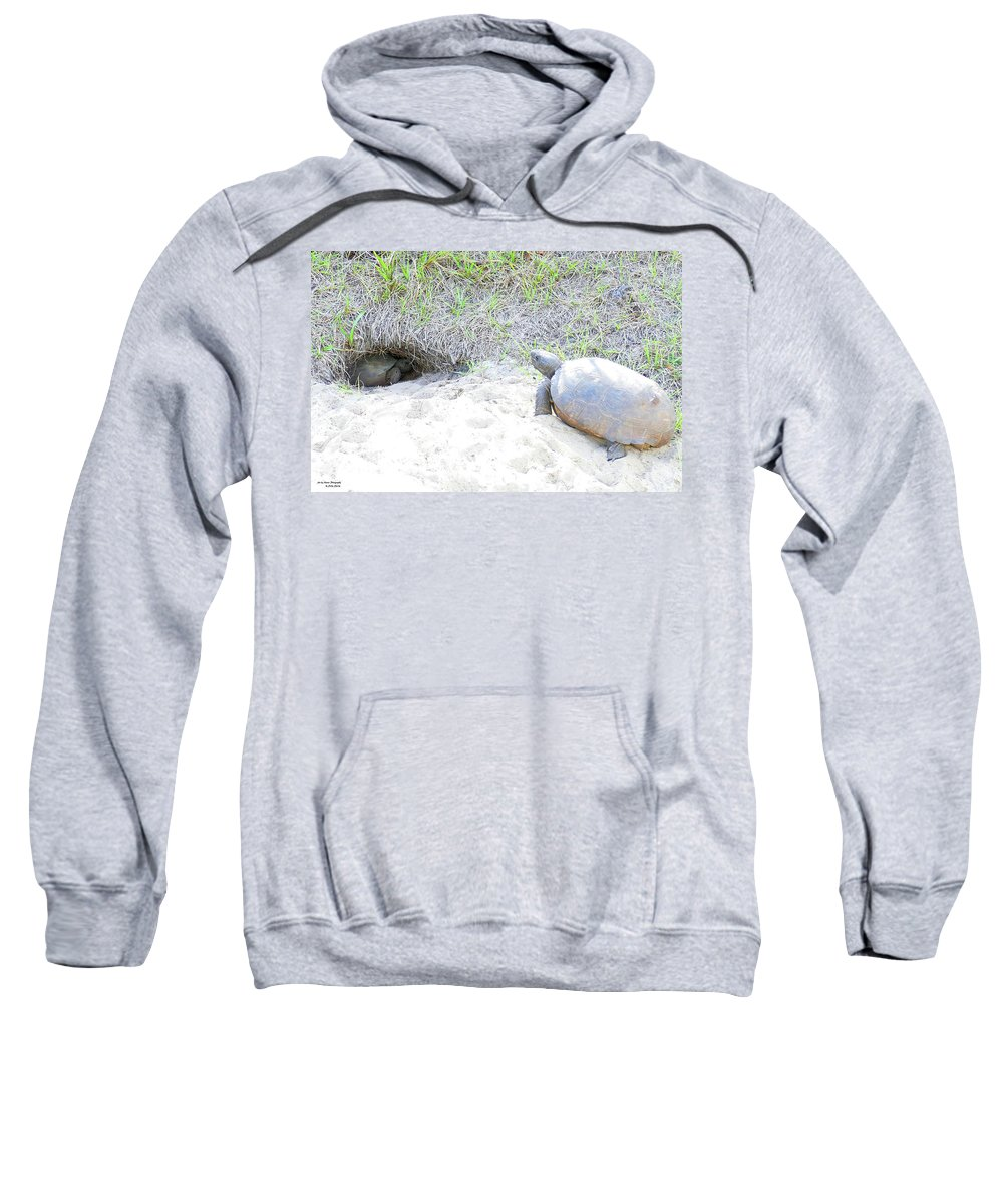 Gopherus Polyphemus Sweatshirt featuring the photograph Seriously by Sally Sperry