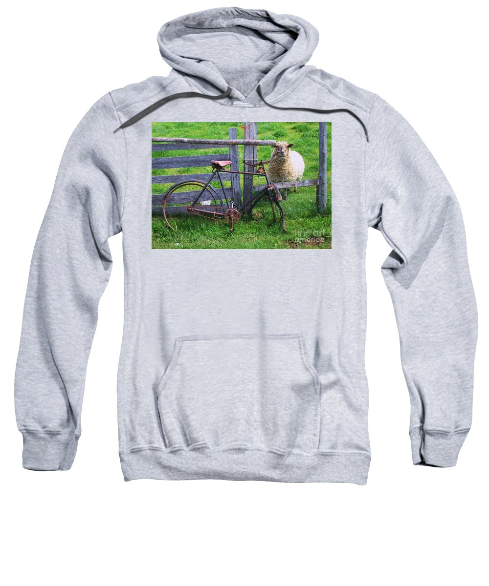 Photograph Sheep Bicycle Fence Grass Sweatshirt featuring the photograph Sheep And Bicycle by Seon-Jeong Kim