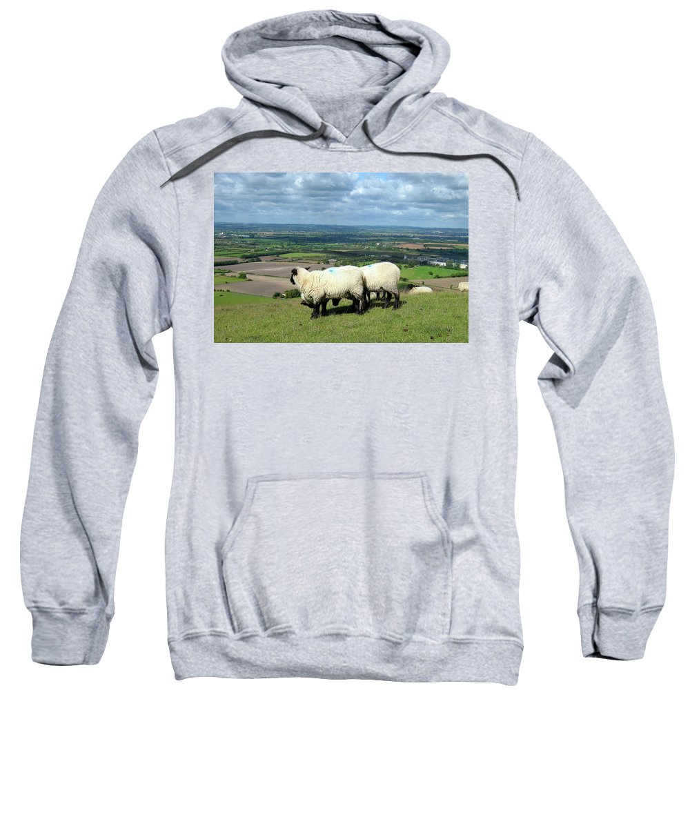 Sheep Sweatshirt featuring the photograph Sheep At Westbury Tor by Kurt Van Wagner