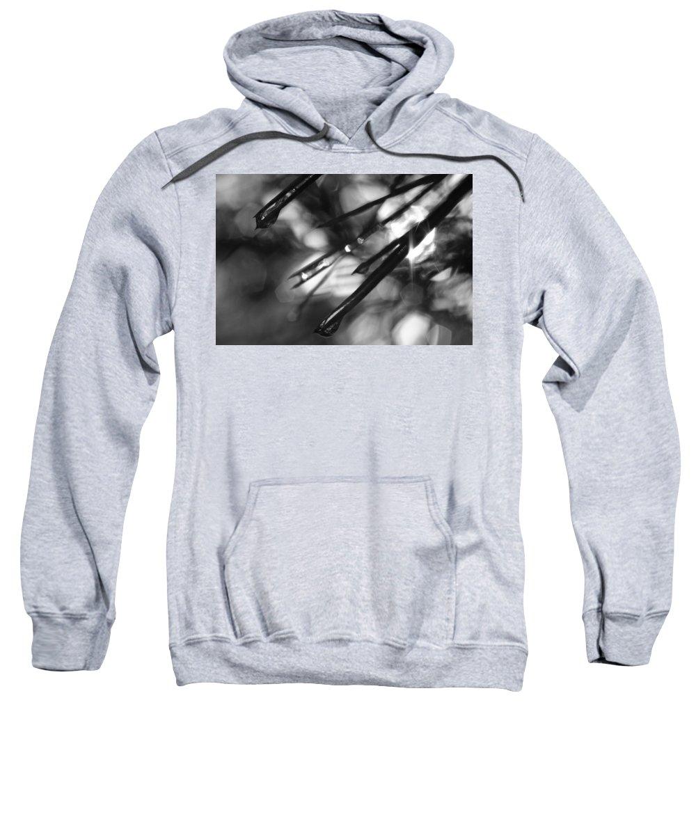 Black And White Sweatshirt featuring the photograph Shine On by Jessica Myscofski