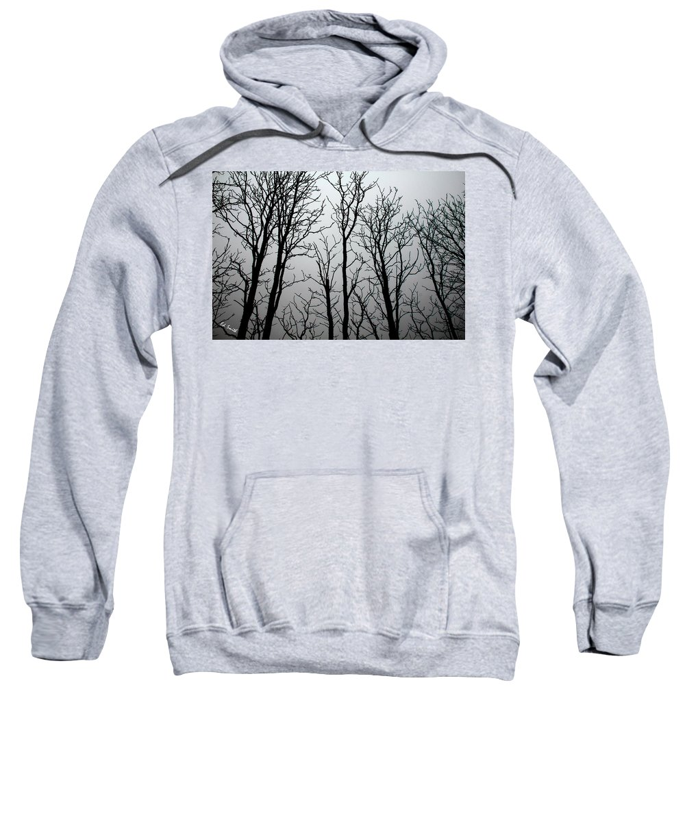 Shiver Me Timbers Sweatshirt featuring the photograph Shiver Me Timbers by Ed Smith