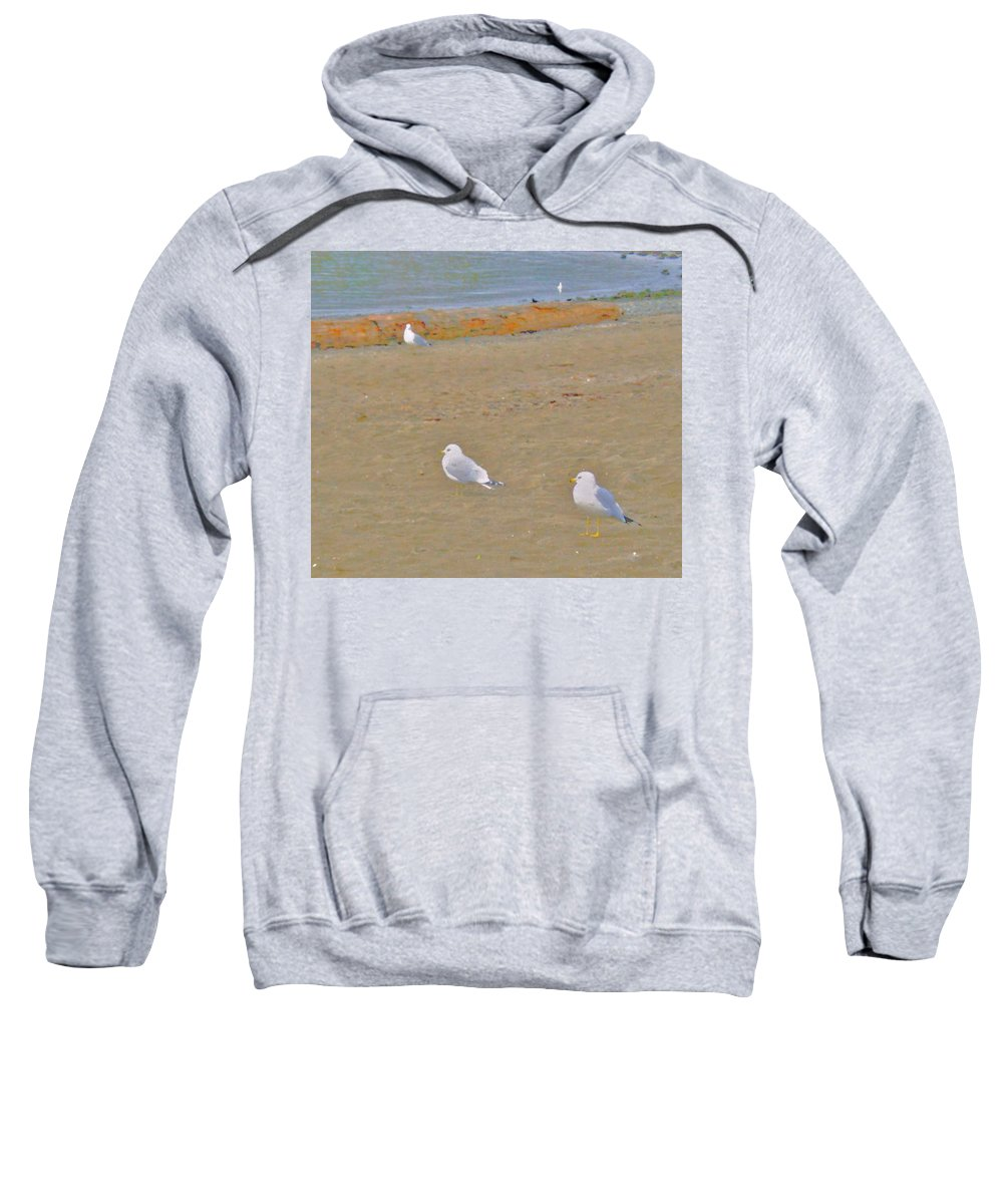 Abstract Sweatshirt featuring the photograph Shorebirds by Lenore Senior