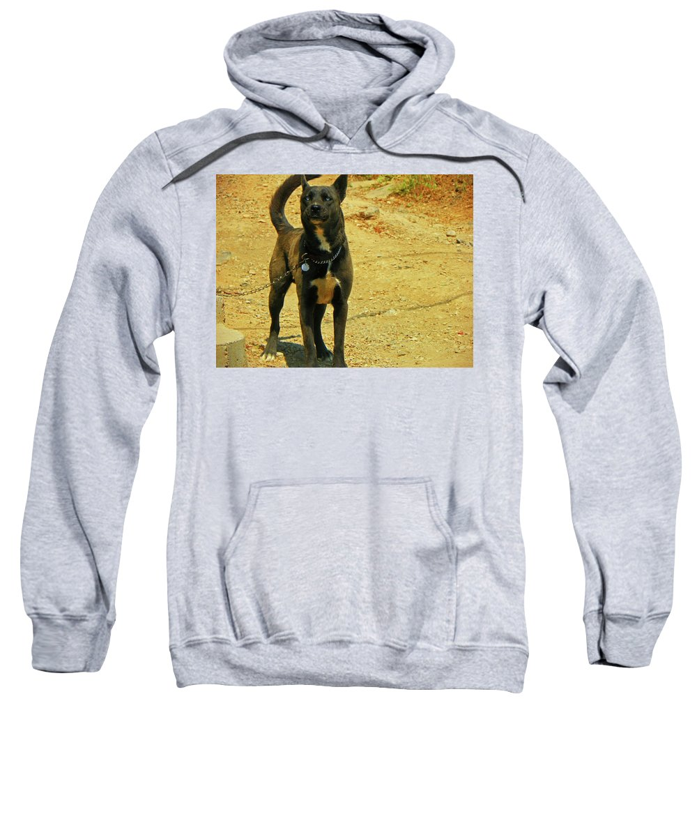 Abstract Sweatshirt featuring the photograph Short Chain by Lenore Senior