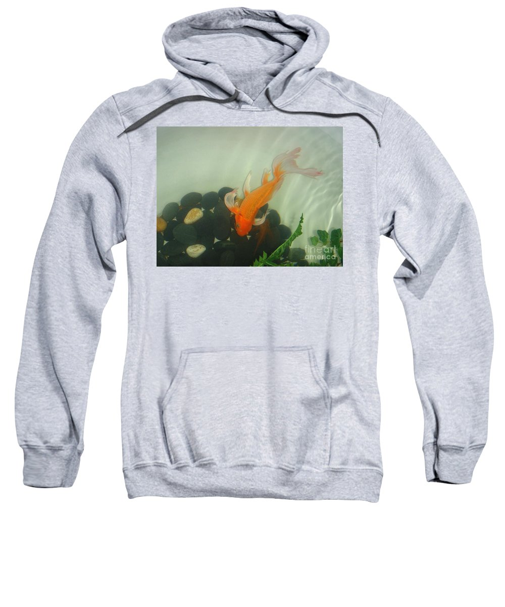 Orange Sweatshirt featuring the photograph Siamese Fighting Fish 1 by Mary Deal