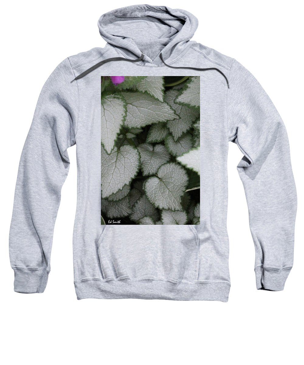 Silver Sensations Sweatshirt featuring the photograph Silver Sensations by Ed Smith