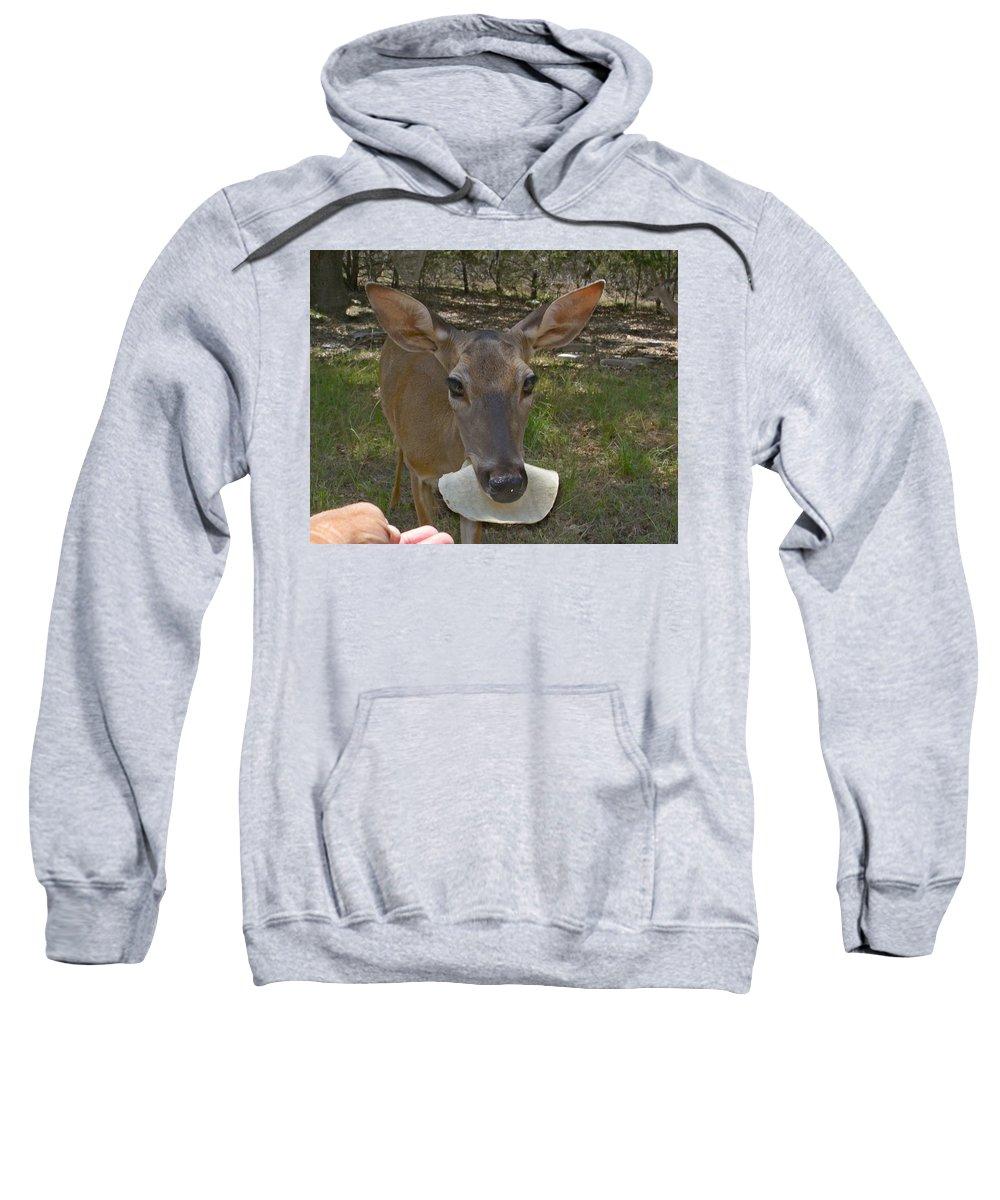Deer Sweatshirt featuring the photograph Simple Pleasures In My Backyard by Stephanie Long