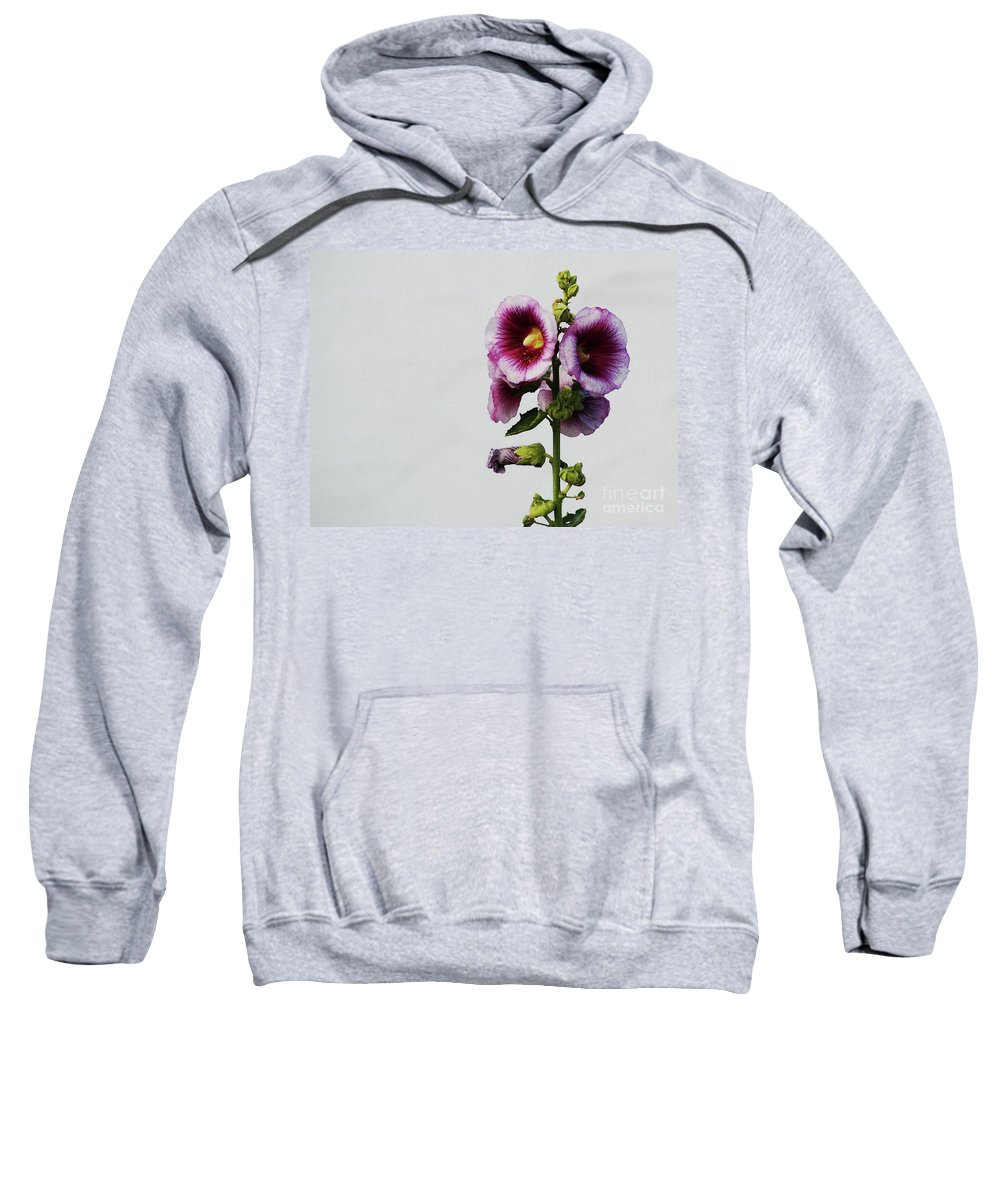 Flower Sweatshirt featuring the photograph Simply Stated by Linda Shafer