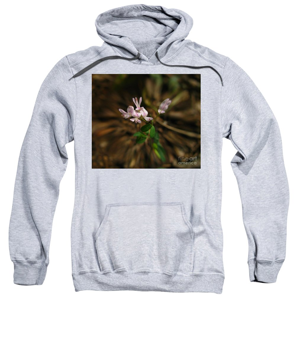 Flowers Sweatshirt featuring the digital art Singing Quartet And The Soloist by Donna Brown