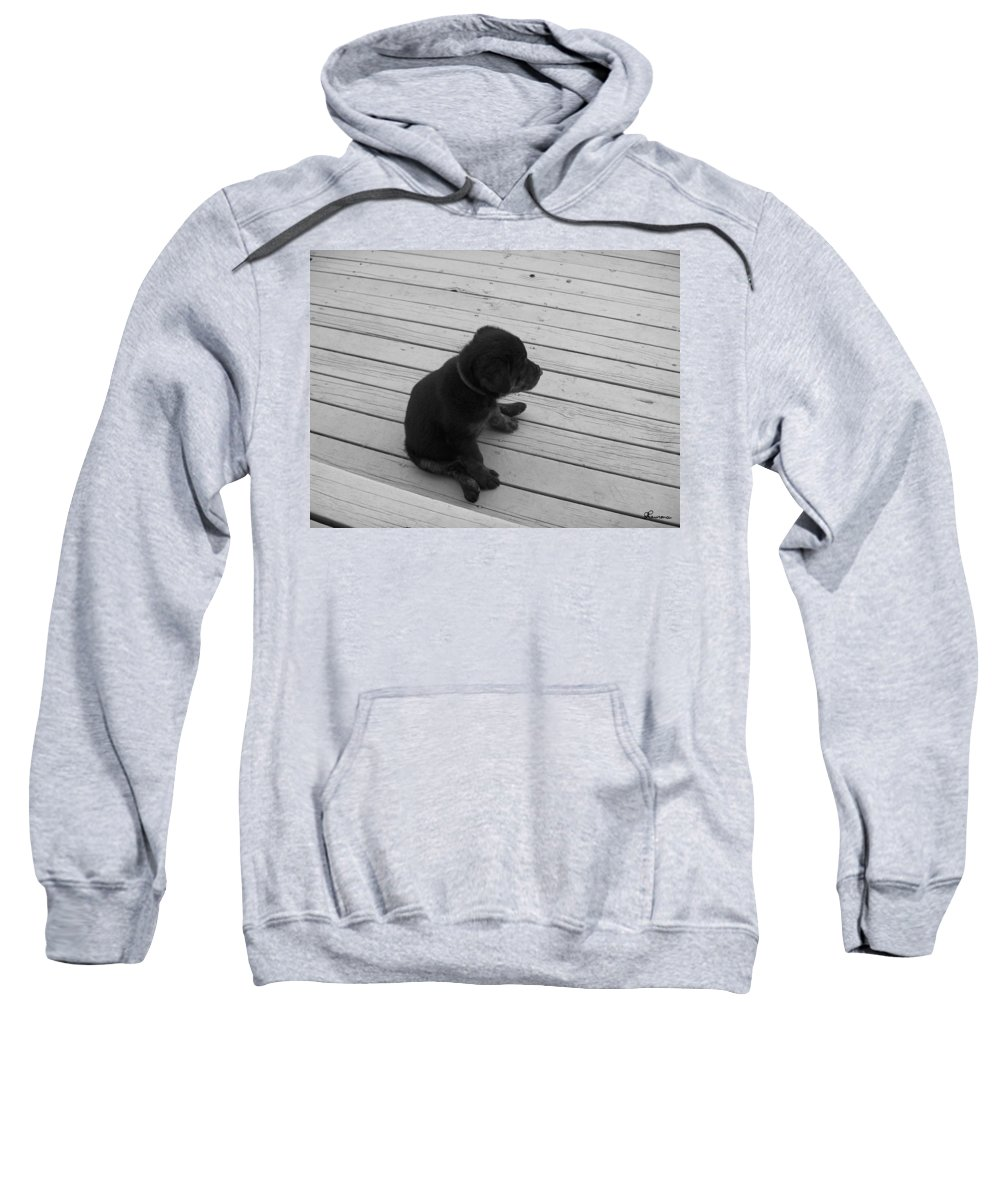 Puppy Dog Baby Relaxing Patience Black And White Photography Cute Sweatshirt featuring the photograph Sit And Think by Andrea Lawrence