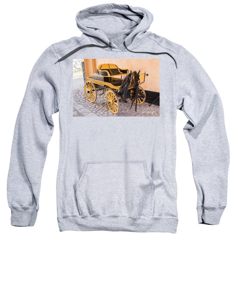 Skansen Sweatshirt featuring the photograph Skansen Carriage by Suzanne Luft