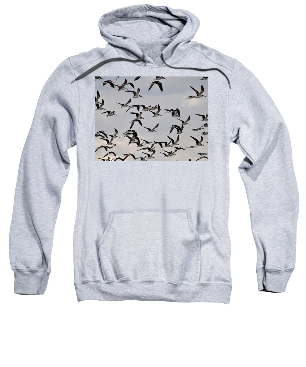 Black Skimmer Sweatshirt featuring the photograph Skimmer Sky by Al Powell Photography USA