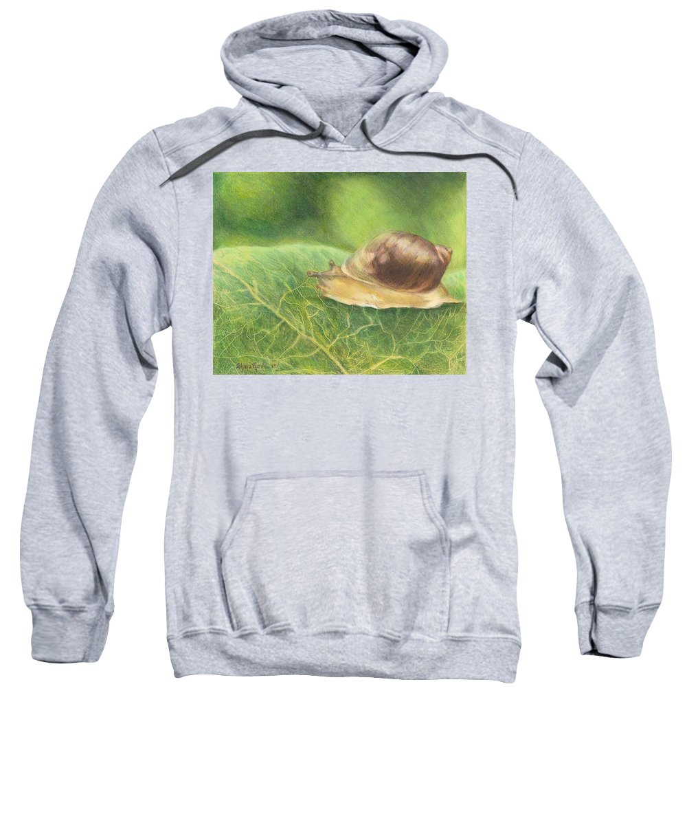 Snail Sweatshirt featuring the drawing Slow And Steady by Shana Rowe Jackson