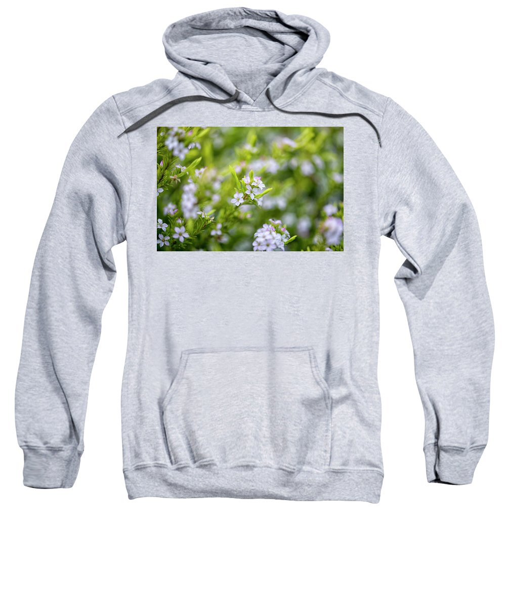 Designboardphotography Sweatshirt featuring the photograph Small White Flowers by DesignBoard Photography