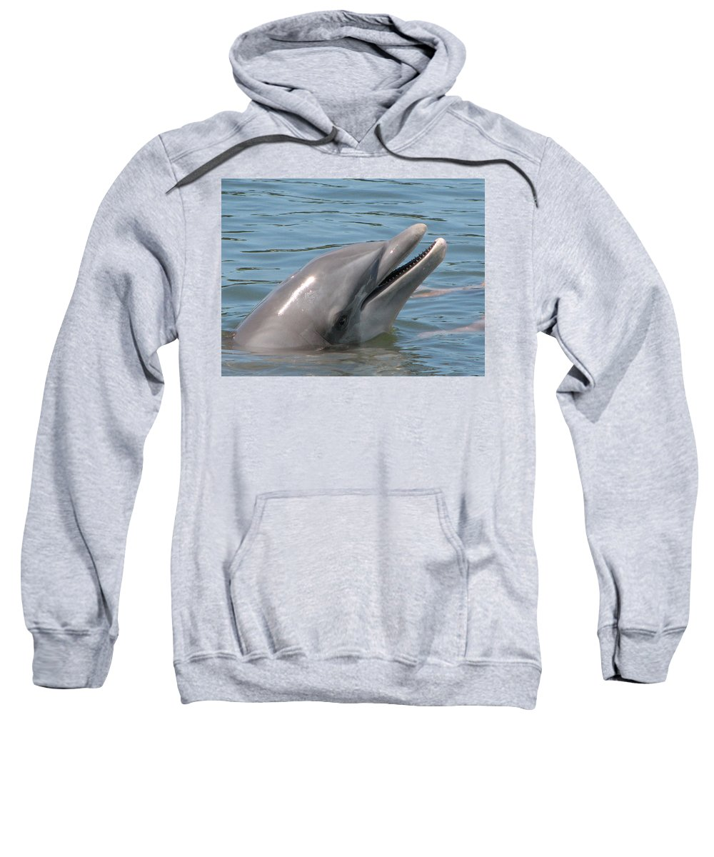 Dolphin Sweatshirt featuring the photograph Smile by Stacey May