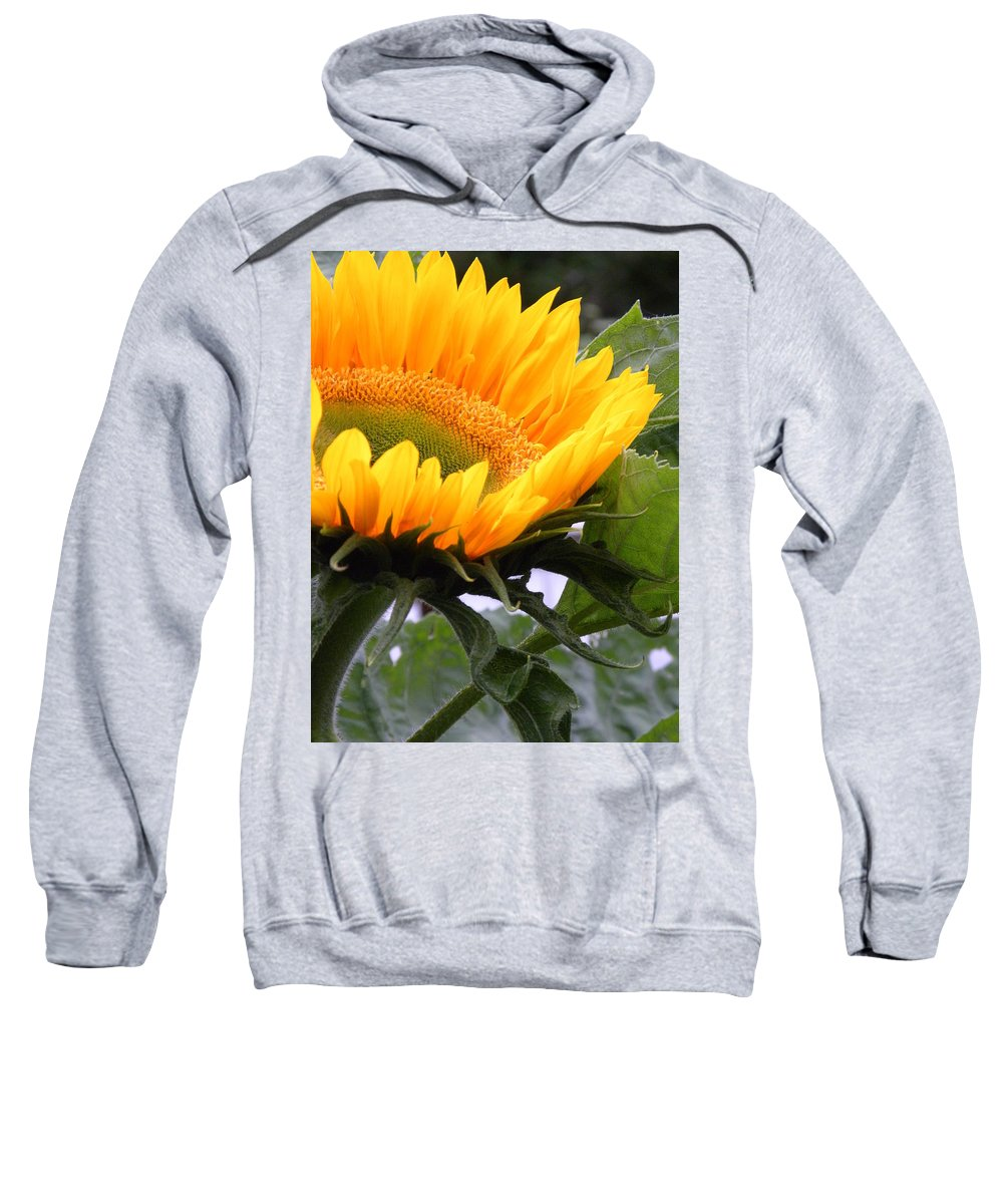 Flower Sweatshirt featuring the photograph Smiling Flower by Peggy McDonald