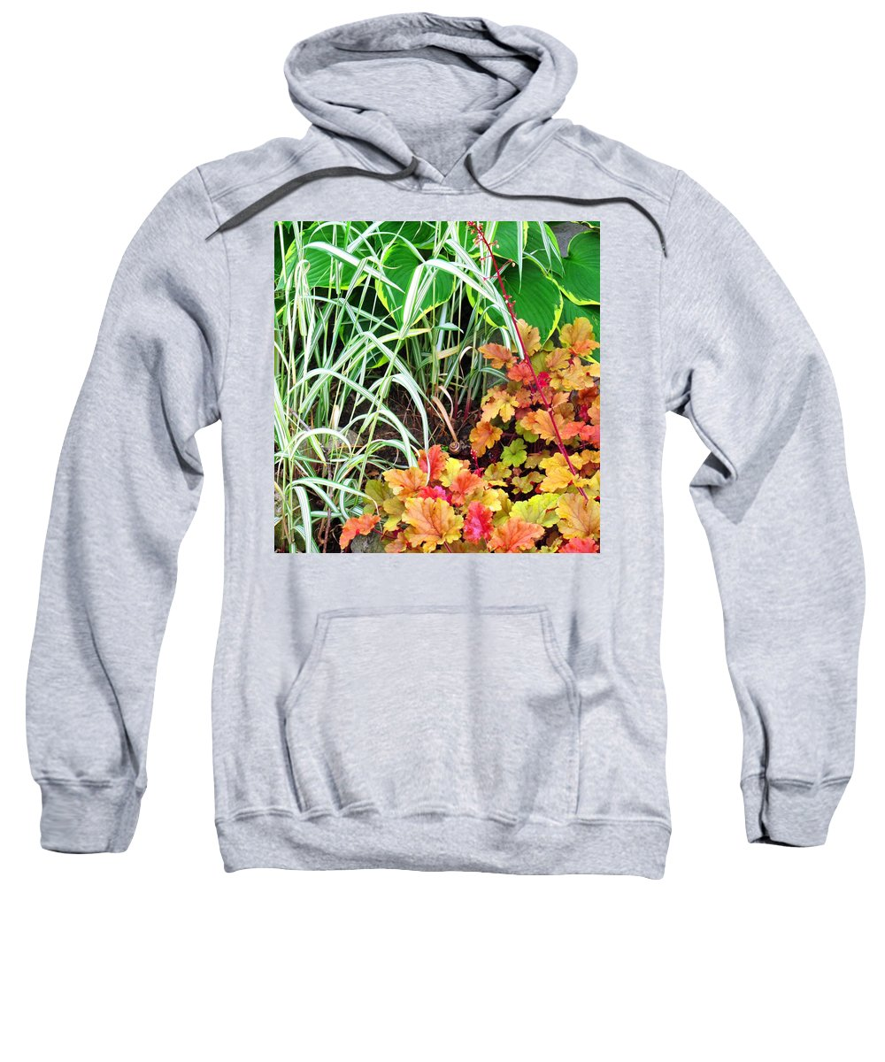 Garden Sweatshirt featuring the photograph Snail In A Rich Composition by Ian MacDonald