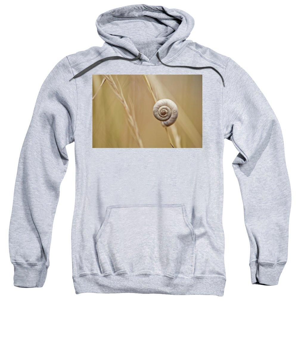 Pests Sweatshirts