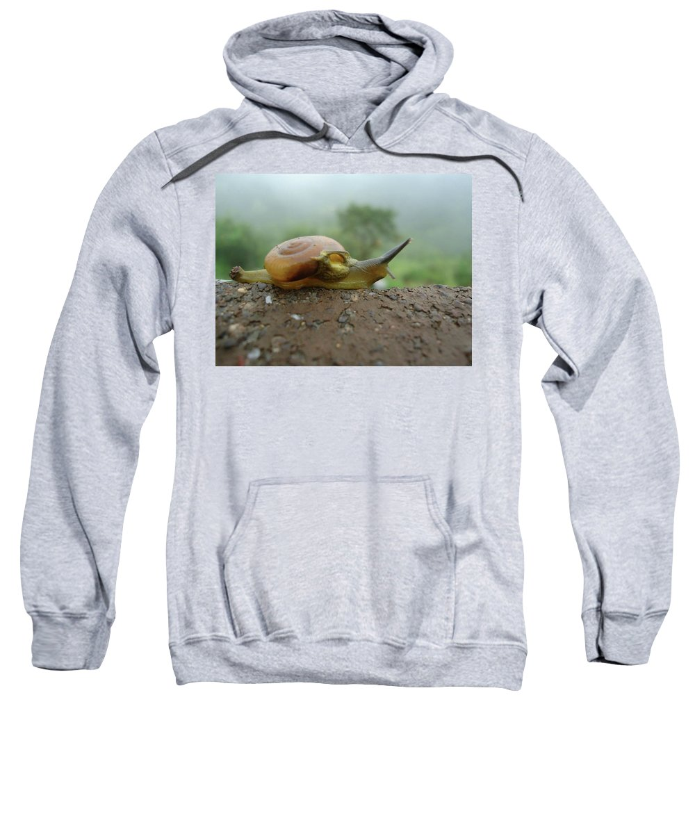 Sneal Sweatshirt featuring the photograph Sneal by Smita Shitole