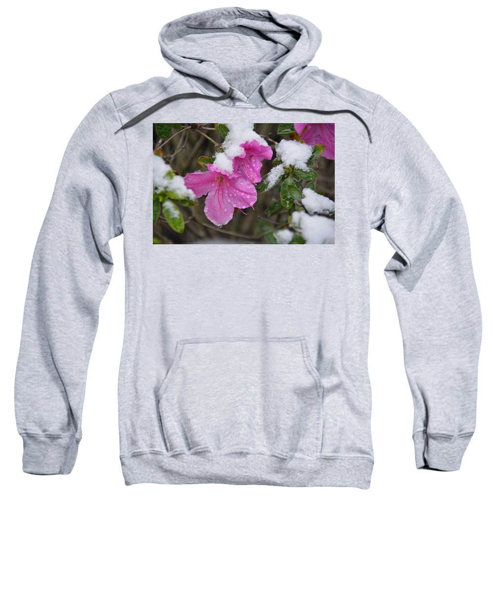 Snow Sweatshirt featuring the photograph Snow In Houston by Brigitta Diaz