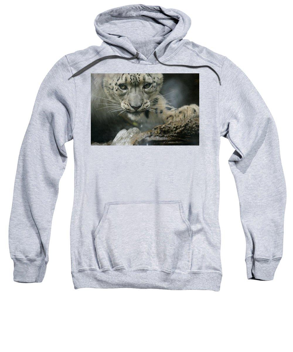 Animals Sweatshirt featuring the photograph Snow Leopard 11 by Ernie Echols