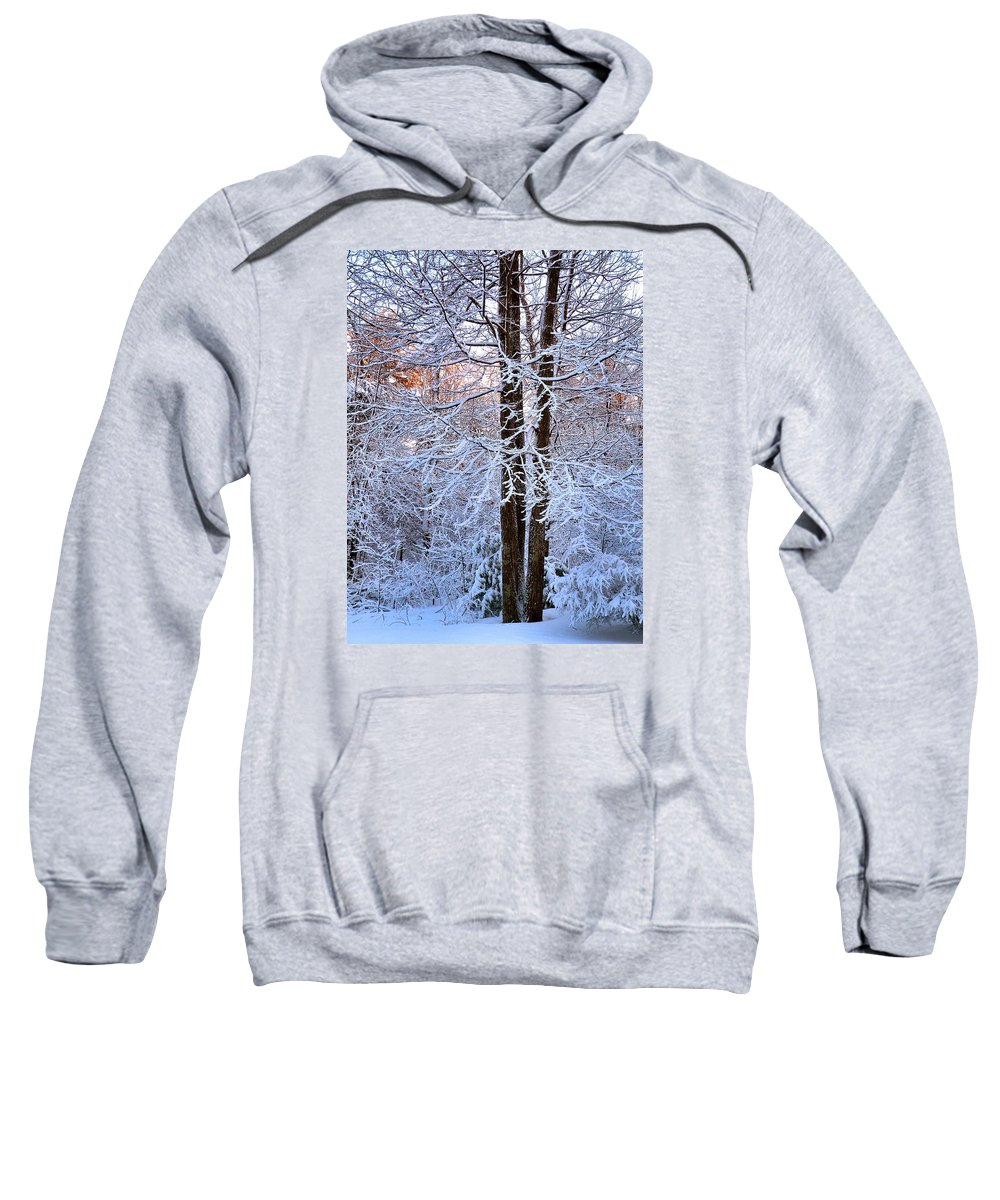 Snow Sweatshirt featuring the photograph Snow Maple Morning by Dave Martsolf