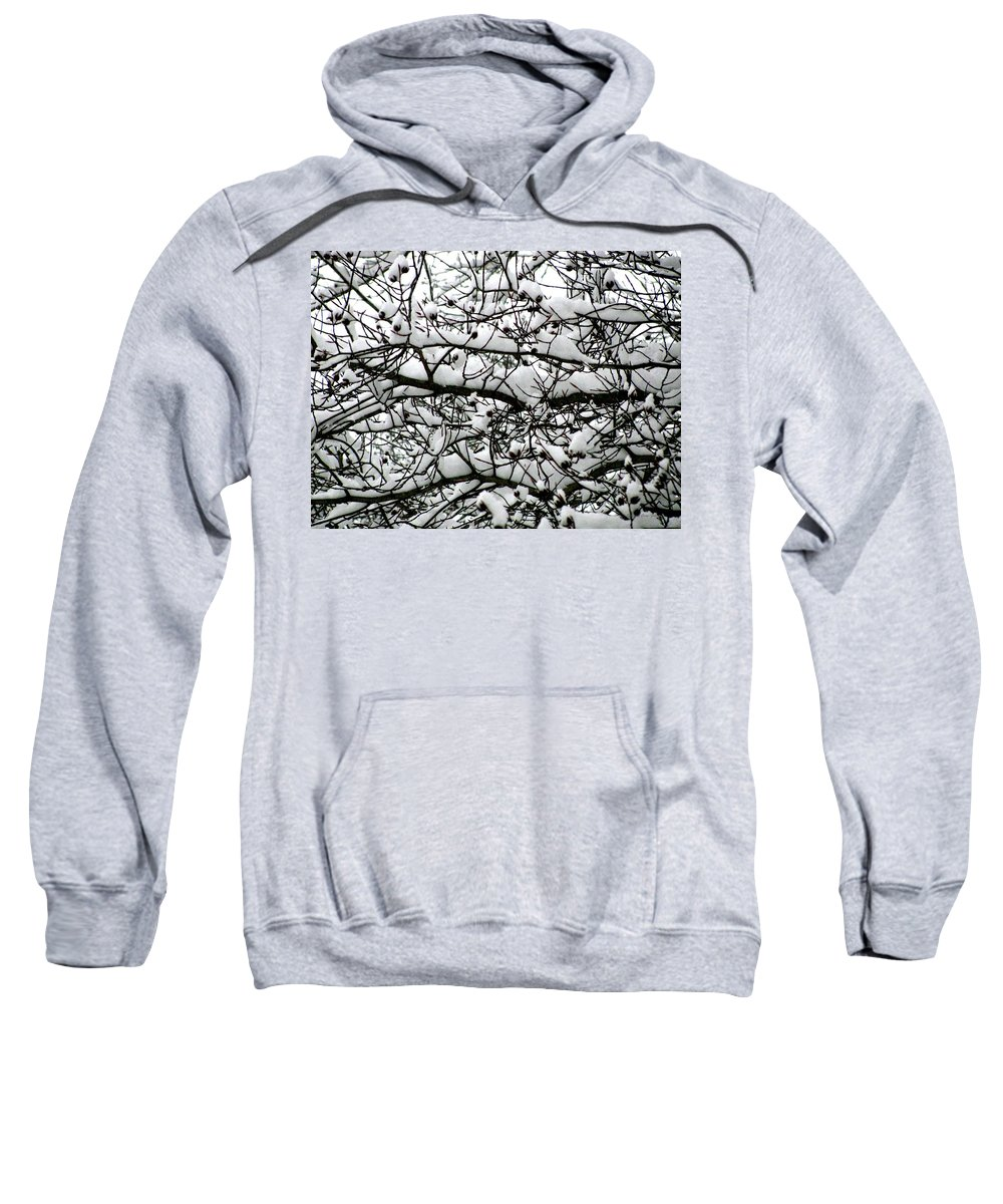 Foliage Sweatshirt featuring the photograph Snowfall On Branches by Deborah Crew-Johnson