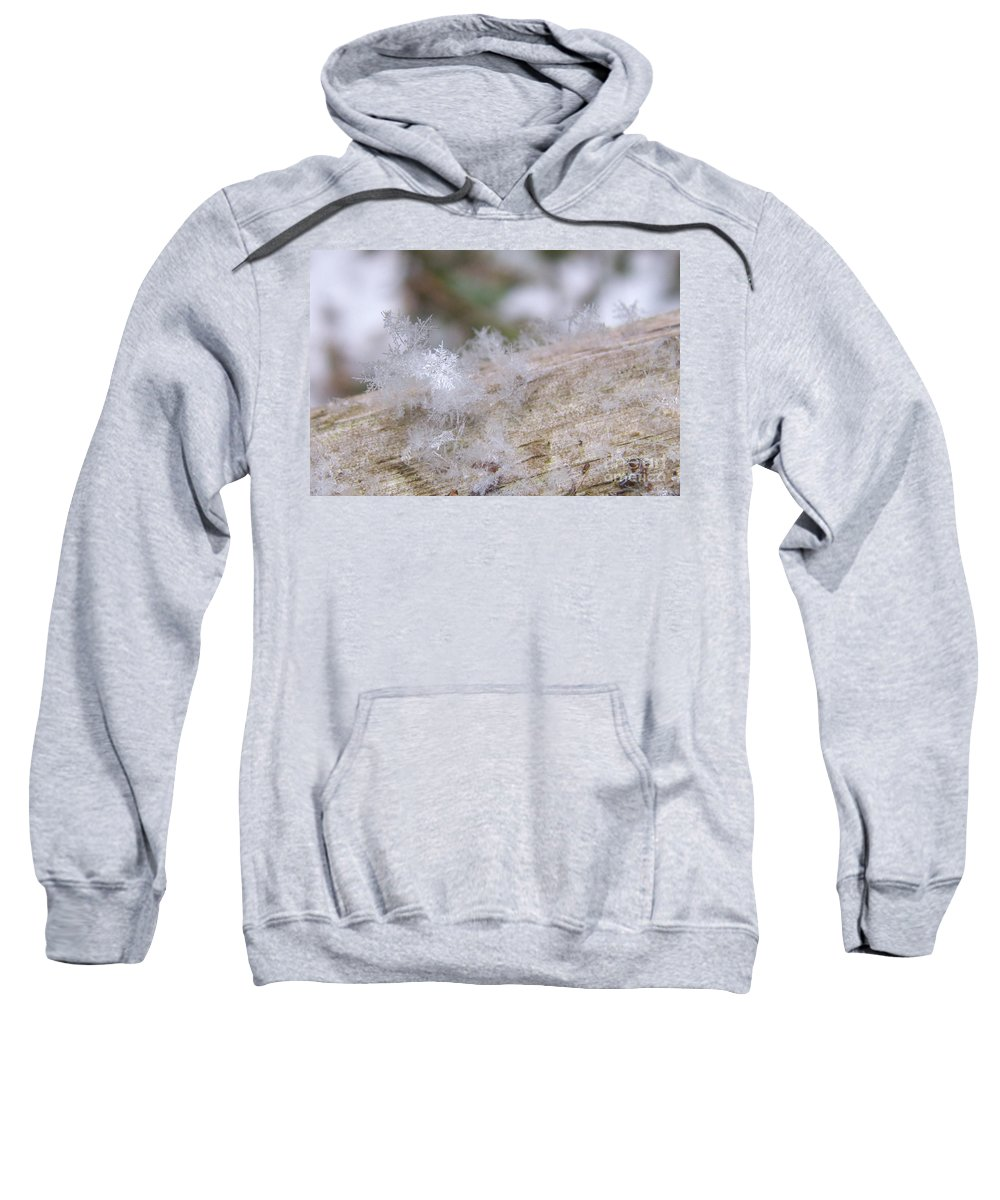 Sharon Talson Sweatshirt featuring the photograph Snowflakes by Sharon Talson