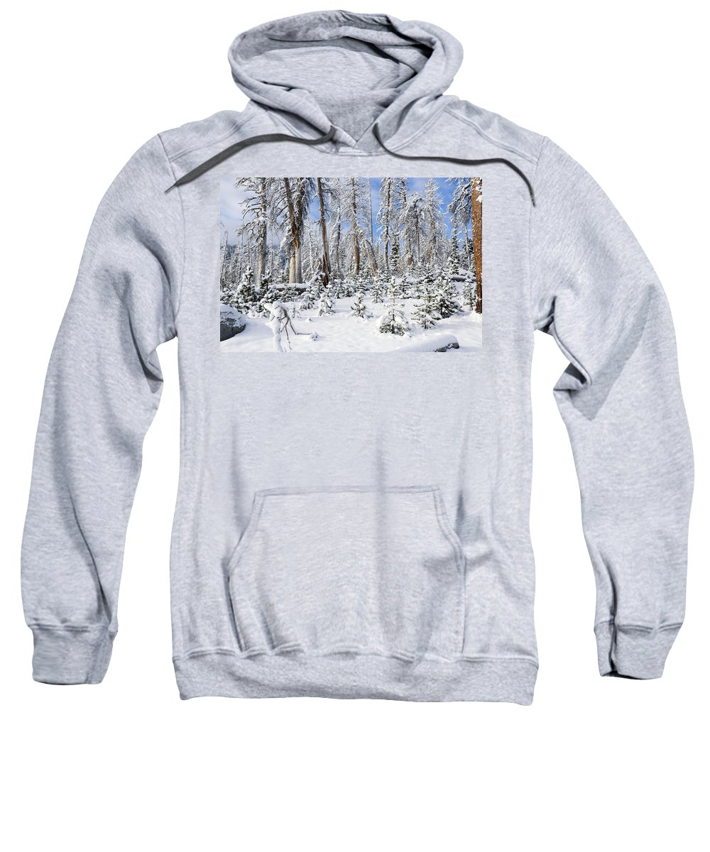 Winter Sweatshirt featuring the photograph Snowscape by Kelley King