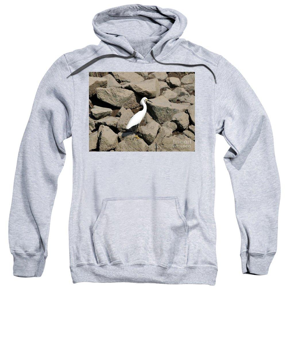Snowy Egret Sweatshirt featuring the photograph Snowy Egret On The Rocks by Al Powell Photography USA
