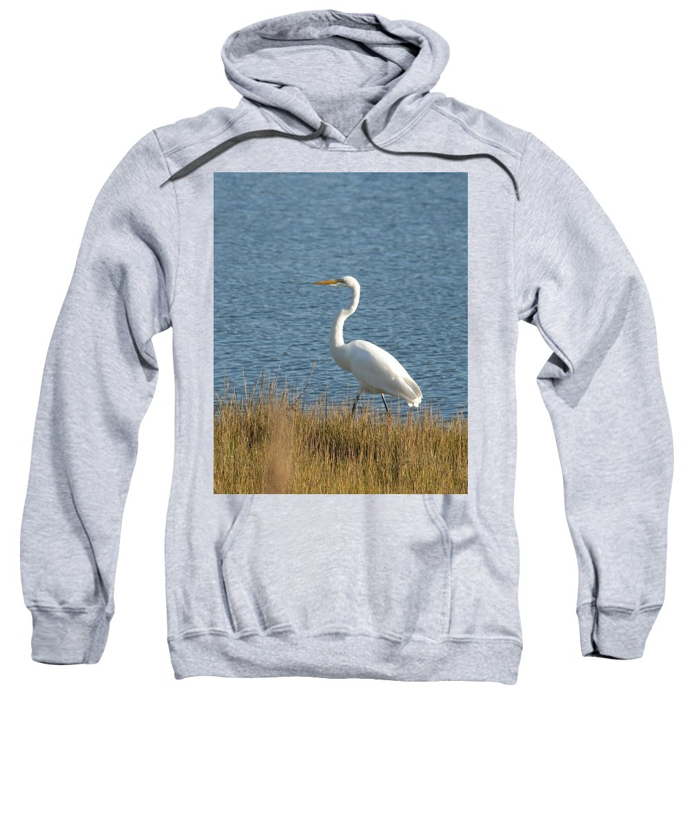 Egret Sweatshirt featuring the photograph Snowy Egret by Steven Natanson