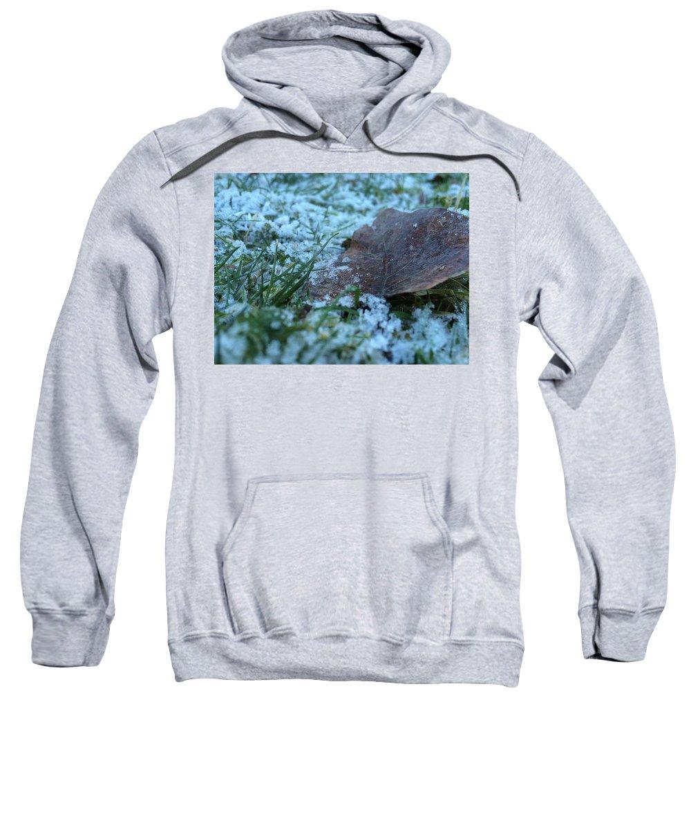 Leaf Sweatshirt featuring the photograph Snowy Leaf by Savanah Schafer