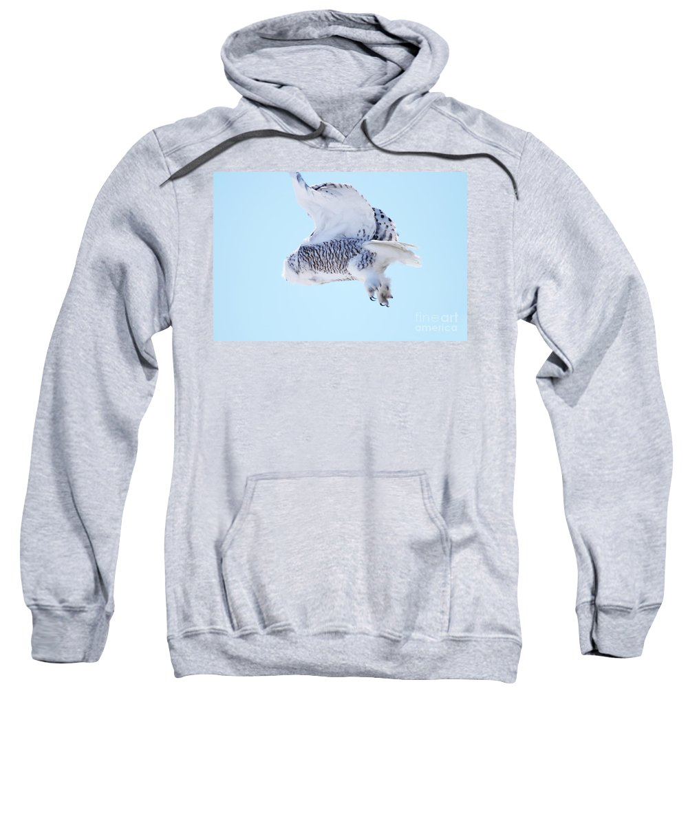 Snowy Take-off Sweatshirt featuring the photograph Snowy Take-off by Alyce Taylor