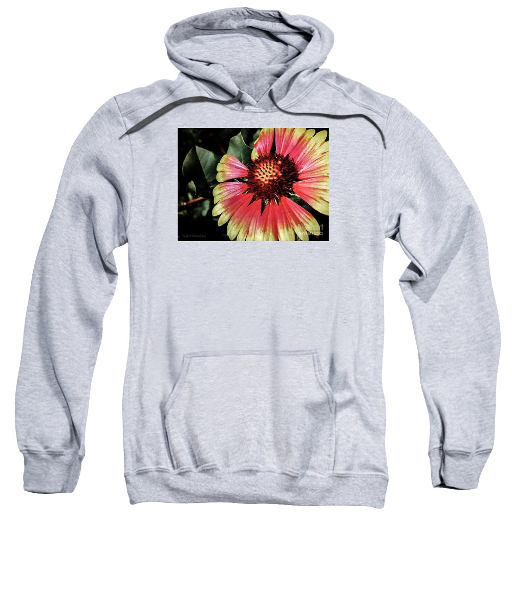 Flora Sweatshirt featuring the photograph Soaking Up The Sun by Todd A Blanchard