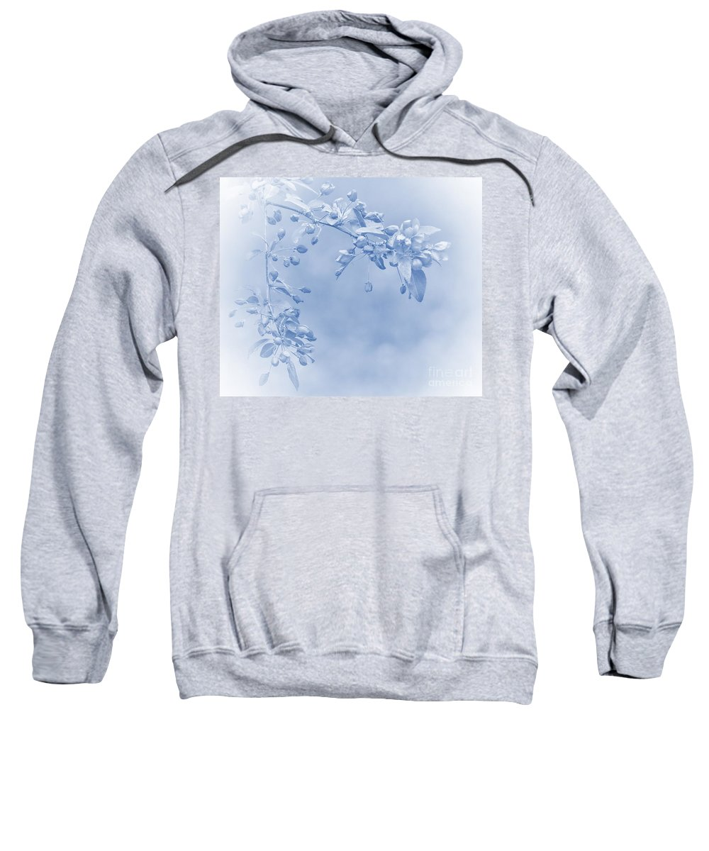 Apple Blossoms Sweatshirt featuring the photograph Soft And Gentle by Andrea Kollo